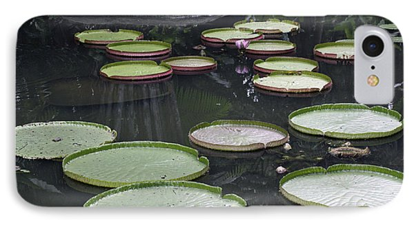 IPhone Case featuring the photograph Giant Lily Pads by Shoal Hollingsworth