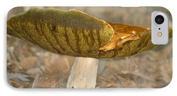 IPhone Case featuring the photograph Giant Mushroom by Linda Segerson