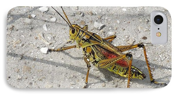 IPhone Case featuring the photograph Giant Orange Grasshopper by Ron Davidson