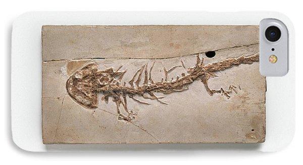 Salamanders iPhone 7 Case - Giant Salamander Fossil by Dorling Kindersley/uig