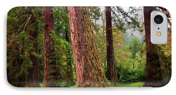 Giant Sequoias. Benmore Botanical Garden. Scotland Phone Case by Jenny Rainbow