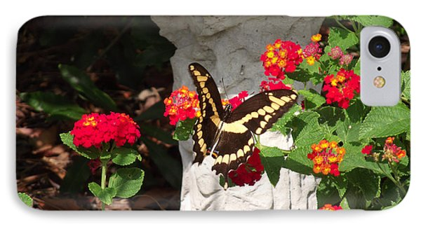 IPhone Case featuring the photograph Giant Swallowtail On Lantana by Jayne Wilson