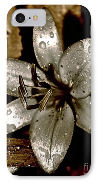 IPhone Case featuring the photograph Gilded  Lilies 2 by Linda Bianic