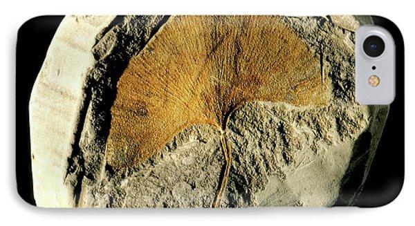 Gingko Leaf Fossil IPhone Case by Gilles Mermet