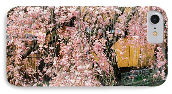 Gionshirakawa Cherry Blossom Kyoto Japan IPhone Case by Panoramic Images