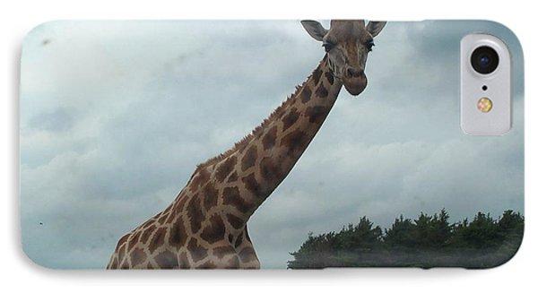 IPhone Case featuring the photograph Giraffe by Barbara McDevitt