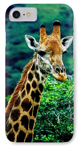 IPhone Case featuring the photograph Giraffe by Dennis Cox WorldViews