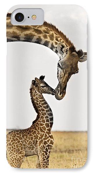 Giraffe's First Kiss IPhone Case by Carol Walker