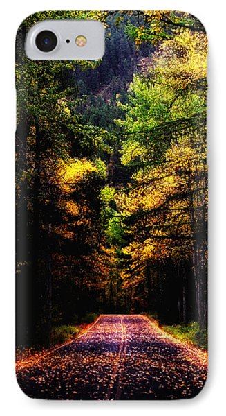Glacier Fall Road IPhone Case by Susan Kinney