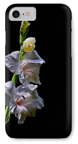 Gladiola IPhone Case by Farol Tomson
