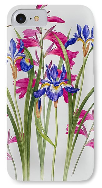 Gladiolus And Iris Sibirica IPhone Case