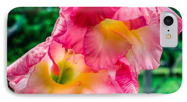 IPhone Case featuring the photograph Gladiolus by Rob Sellers