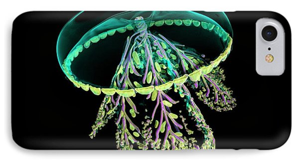 Glass Jellyfish Model IPhone Case