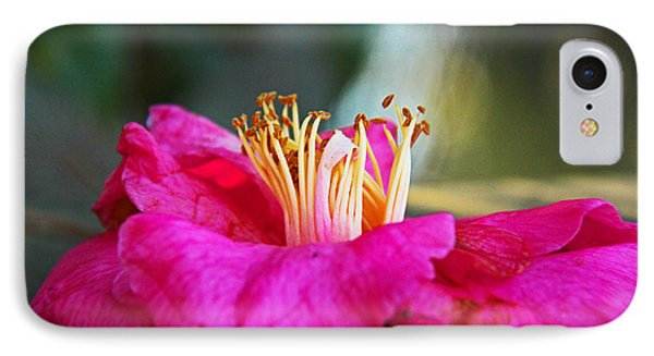 IPhone Case featuring the photograph Glencairn Garden 020 by Andy Lawless