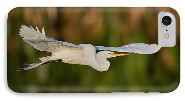 Gliding Great Egret IPhone Case by Andres Leon