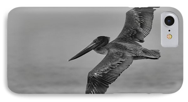 Gliding Pelican In Black And White IPhone Case by Sebastian Musial