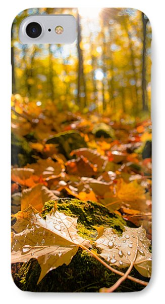 Glistening Autumn Dew IPhone Case by Mark David Zahn