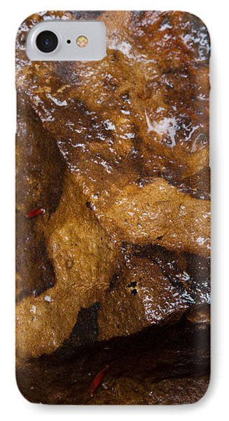 IPhone Case featuring the photograph Glistening Stone by Haren Images- Kriss Haren