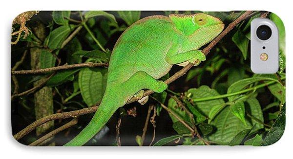 Globe-horned Chameleon IPhone Case