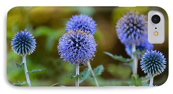 IPhone Case featuring the photograph Globe Thistle by Rodney Campbell
