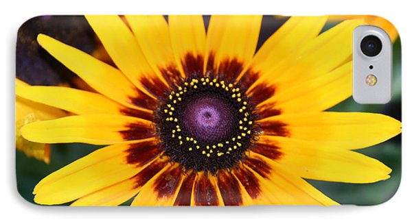 Gloriosa Daisy IPhone Case by Denyse Duhaime