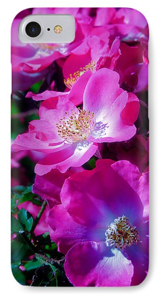 Glorious Blooms IPhone Case by Lucinda Walter