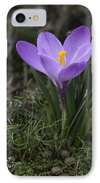 IPhone Case featuring the photograph Glorious Crocus by Betty Denise