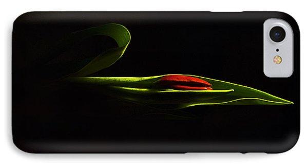 Glorious Light IPhone Case by Elsa Marie Santoro