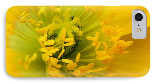IPhone Case featuring the photograph Glory Of Nature by Deb Halloran