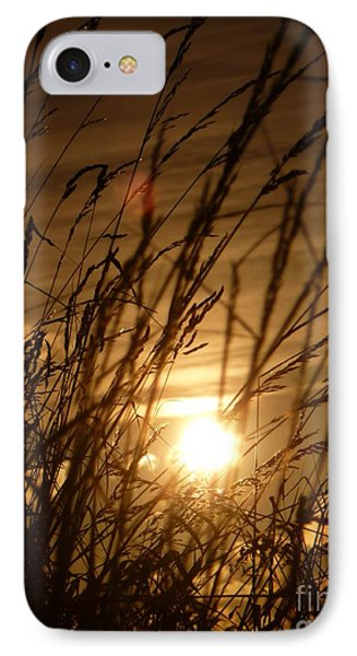 Glow Through The Grass IPhone Case