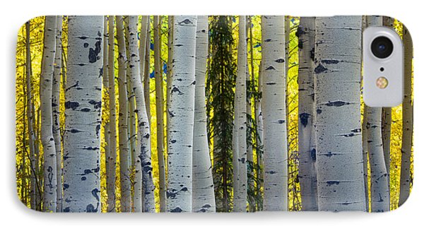 Glowing Aspens Phone Case by Inge Johnsson