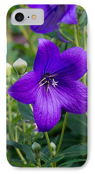 Glowing Balloon Flower Greating The Morning IPhone Case by Douglas Barnett