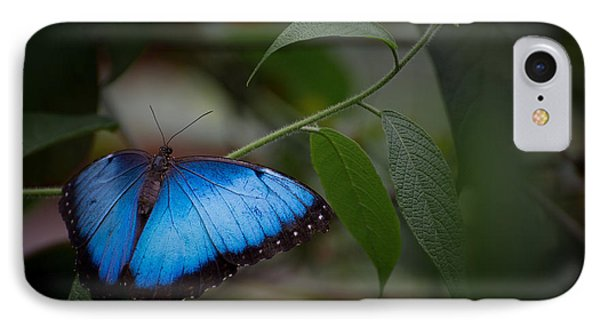 Glowing Blue Phone Case by Penny Lisowski