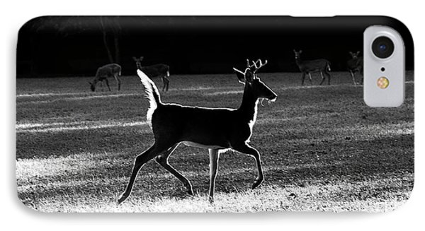 IPhone Case featuring the photograph Glowing Buck by Lorna Rogers Photography