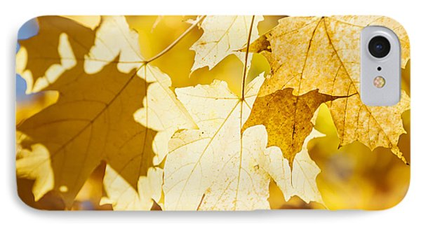Glowing Fall Maple Leaves Phone Case by Elena Elisseeva