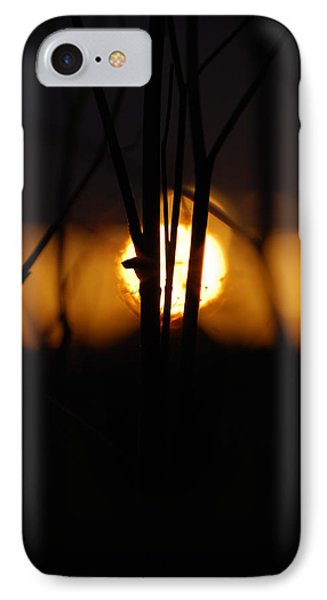 IPhone Case featuring the photograph Glowing Lace by Jani Freimann