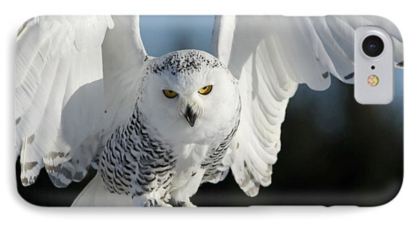 Glowing Snowy Owl In Flight IPhone Case
