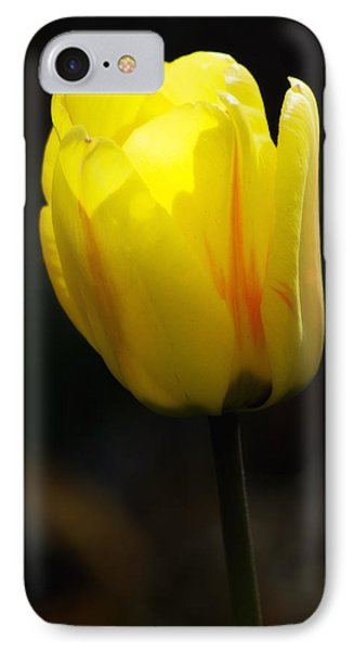 Glowing Tulip IPhone Case by Shelly Gunderson