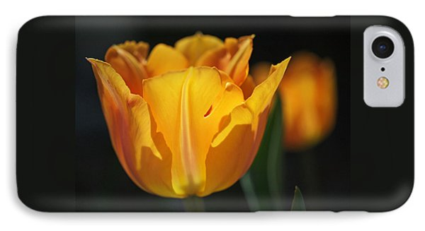 Glowing Tulips Phone Case by Rona Black