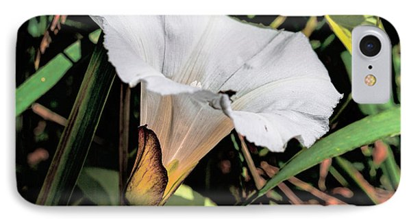 IPhone Case featuring the photograph Glowing White Flower by Leif Sohlman