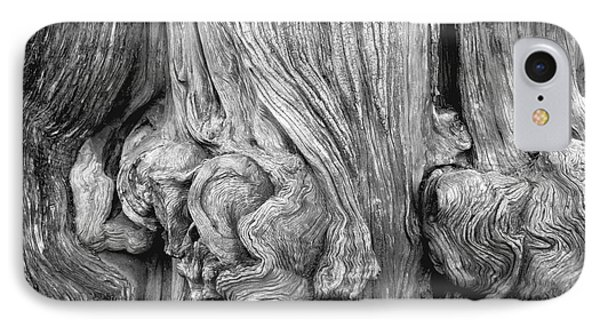IPhone Case featuring the photograph Gnarled Tree by Alexandra Jordankova