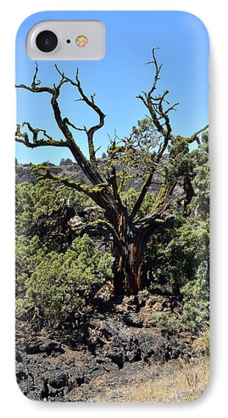 Gnarled Tree On The Lava Beds - Portrait Phone Case by Rich Rauenzahn