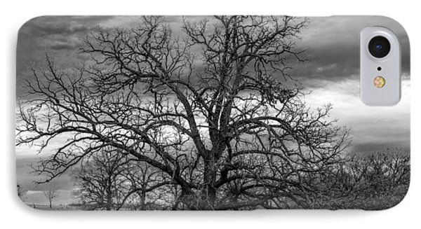 IPhone Case featuring the photograph Gnarly Tree by Sennie Pierson