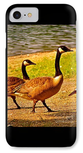 Go Geese IPhone Case
