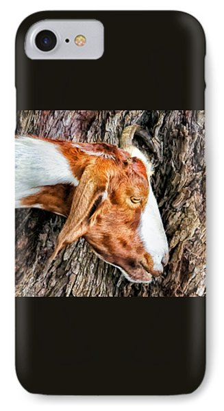 IPhone Case featuring the photograph Goat 3 by Dawn Eshelman