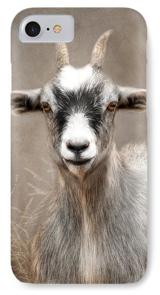 Goat Portrait IPhone 7 Case by Lori Deiter