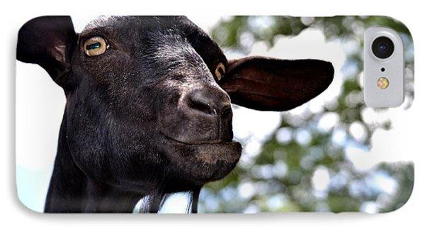 Goat IPhone Case by Tara Potts