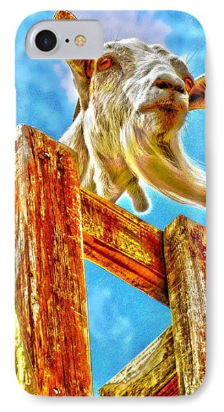 Goat Up High IPhone Case by Annie Zeno