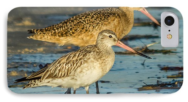 Godwits IPhone Case
