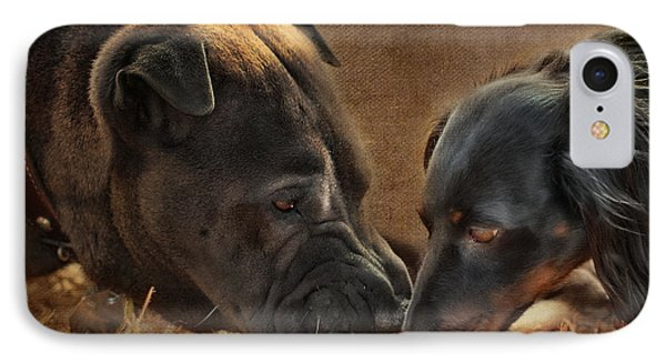 Going Nose To Nose IPhone Case by Terry Fleckney